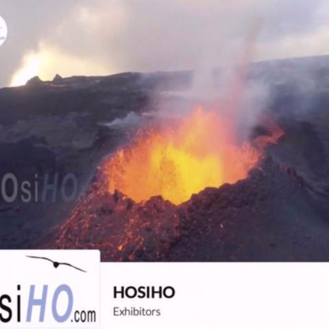 HOsiHO est exposant au Sunny Side of the Doc, en Distanciel  une fois encore cette année!